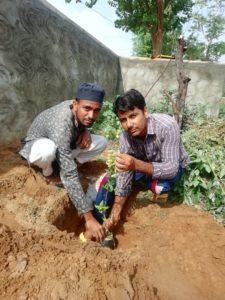 शेरानी आबाद के सूफ़ी नगर में ऑल इंडिया उलमा मशाईख बोर्ड ने वृक्षारोपण किया l
